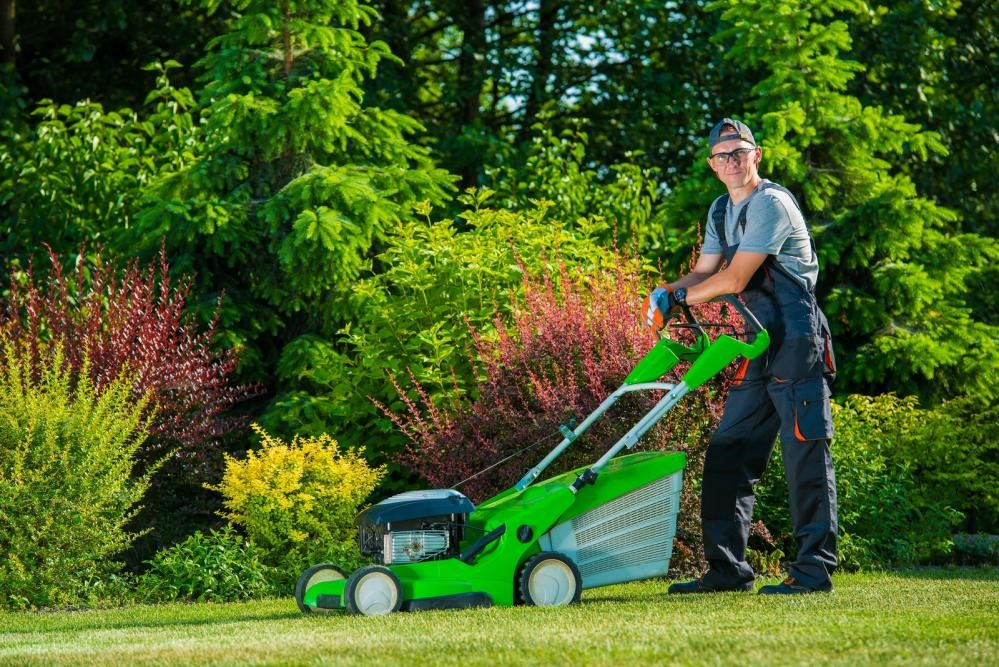 commercial landscaping & lawn care